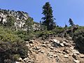 Stanislaus National Forest, Pinecrest, United States May 07, 2017 020253.jpeg