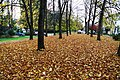 Stanley Park - 10398376825.jpg