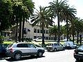 Stazione Sperimentale Industrie Essenze e Derivati Agrumi - View from Via Marina - Reggio Calabria, Italy - May 2009.jpg