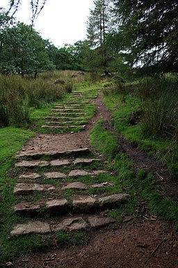 Steps up Win Hill - geograph.org.uk - 943903