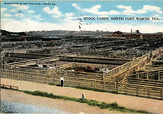 Fort Worth Stockyards - Stock yards, north Fort Worth, Texas (postcard, circa 1900–1908)