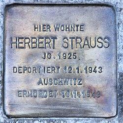 Photo of Herbert Strauß brass plaque