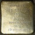 Stumbling stone for Sofie Sulamisch Stein (Jahnstraße 26)