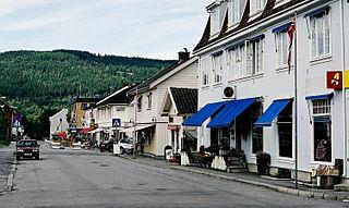 Jevnaker Municipality in Viken, Norway