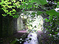 Stream going under the road - geograph.org.uk - 703557.jpg