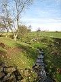 Stream near Halfway House - geograph.org.uk - 348930.jpg