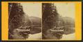 Study at Echo Lake, by John B. Heywood.png