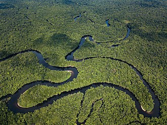 Tropical rainforest.  An aerial view of the Cardamom Mountains rain forests, from the Cambodian parts. Stung Proat Cardamom Mountains.jpg