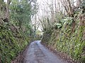 Sunken lane, Parracombe - geograph.org.uk - 739533.jpg