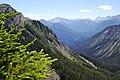 Sunshine Meadows - Banff - panoramio (2).jpg