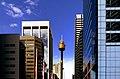 Sydney Tower. (21188070626).jpg