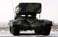 TZM-T of the TOS-1A system (1).jpg