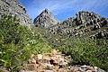 Table Mountain hiking (33514422068).jpg