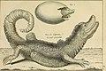 Tableau encyclopédique et méthodique des trois règnes de la nature - dédié et présenté a M. Necker, ministre d'État, and directeur général des Finances (1789) (14779277351).jpg