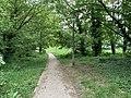 Talus Grands Chemins Fontenay Bois 5.jpg