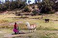 Tambomachay, Cuzco, Perú, 2015-07-31, DD 93.JPG