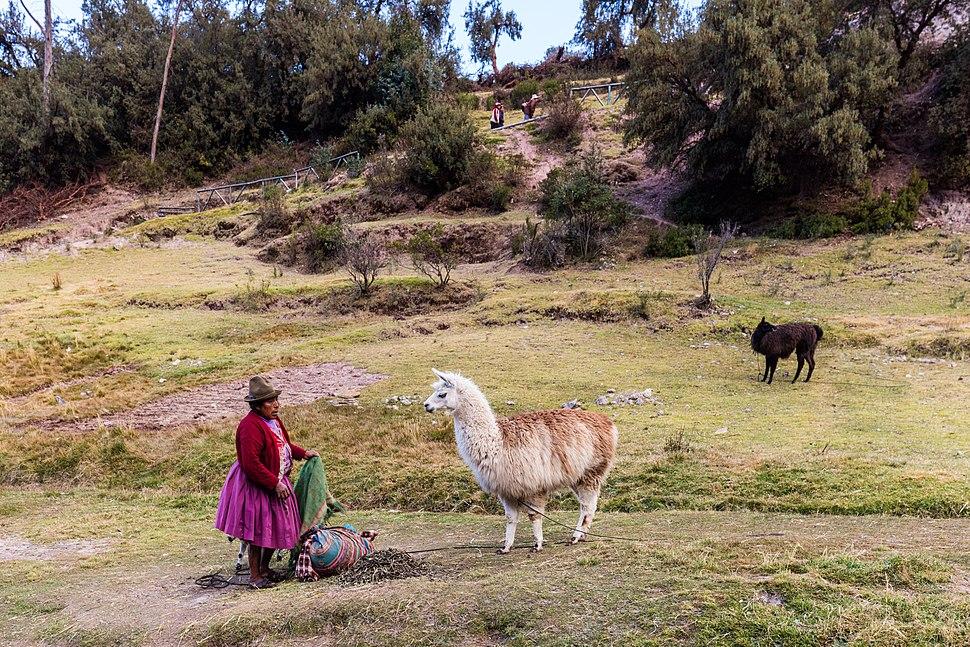Tambomachay, Cuzco, Perú, 2015-07-31, DD 93