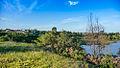 Tauranga Welcome Bay-1000078.jpg
