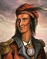 Tecumseh color.jpg