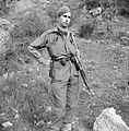 The British Army in Italy 1943 NA10073.jpg