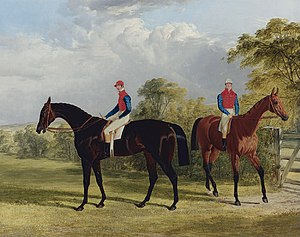 George Stanhope, 6th Earl of Chesterfield - Image: The Earl of Chesterfield's Industry with W Scott up and Caroline Elvina with J Holmes up in a paddock by John Frederick Herring sr