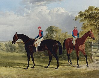 George Stanhope, 6th Earl of Chesterfield - Two of the earl's horses in 1838; on the left Industry, who won the Oaks that year, on the right Caroline Elvina, who also ran in the Oaks but was unplaced. She was sold to the emperor of Russia (John Frederick Herring, Sr., 1838)