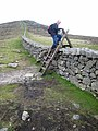 The Mourne Wall - geograph.org.uk - 437283.jpg