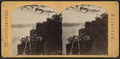 The Palisades on the Hudson River, from Robert N. Dennis collection of stereoscopic views.png