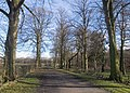 The Path to Peover Hall - geograph.org.uk - 328551.jpg