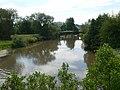The River Severn - geograph.org.uk - 1384717.jpg