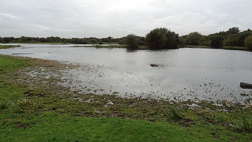 The Slack bird sanctuary in The Chase Nature Reserve, Barking 3