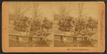 The festive sugar season, by Kilburn, B. W. (Benjamin West), 1827-1909.png