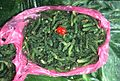 The green alga, Caulerpa for sale in a Fiji market (3088402787).jpg