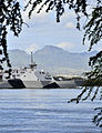 The littoral combat ship USS Freedom (LCS 1) arrives at Joint Base Pearl Harbor-Hickam, Hawaii for a scheduled port visit during a deployment to the Asia Pacific region, March 11, 2013 130311-N-RI884-047.jpg