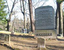 La tombe d'Henry David Thoreau, au cimetière de Sleepy Hollow.