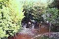 Tikal (9791286793).jpg