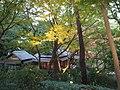 Tokyo Metropolitan Teien Art Museum PB292540.jpg