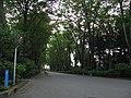 Tokyo Route 187 -00.jpg