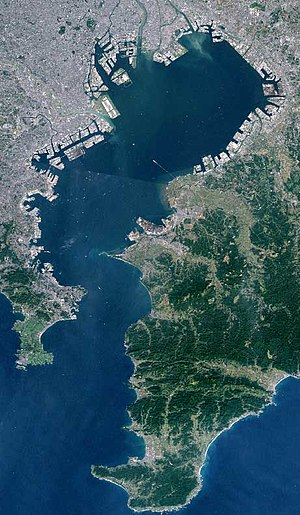 Tokyo Bay seen from space. Taken by Landsat.