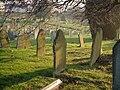 Torquay cemetery - geograph.org.uk - 298359.jpg