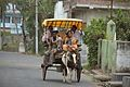 Tourists Ride Tonga - Murshidabad 2017-03-28 5953.JPG