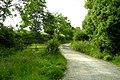 Towards Egleton - geograph.org.uk - 968688.jpg