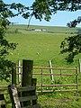 Towards Newlands - geograph.org.uk - 464226.jpg