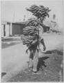 Trabajador United Fruit Company, 1913.tif
