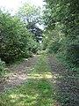 Track heading East from Clarkham Cross - geograph.org.uk - 557097.jpg