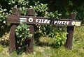 Trails in Pila-Koszyce.JPG