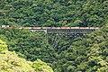 Trem cargueiro na travessia da Ponte São João, visto do próximo viaduto.jpg