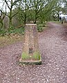 Triangulation pillar on the Staffordshire Way, Kinver Edge looking south-southwest - geograph.org.uk - 1700825.jpg