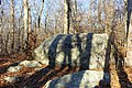 Truth - Babson's Boulders - Dogtown, MA - DSC01550.jpg