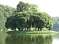 Tsaritsyno (2008-08-15), Upper pond, Bird Island, img01.jpg